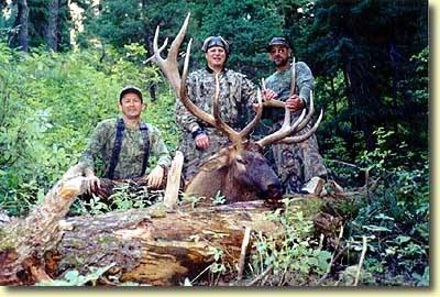 Marty's Big Idaho Bull