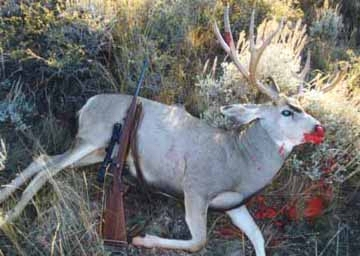 Rooster's first Wyoming Muley