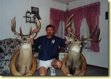 Tom's Bookend buck