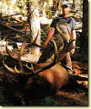 Utah Produces Another MONSTER BULL