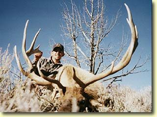 Nick's Trophy Bull Elk