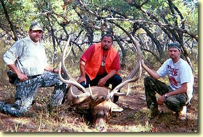 Aaron's Big Bull