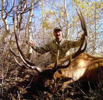 Trophy Nevada Bull Hunt