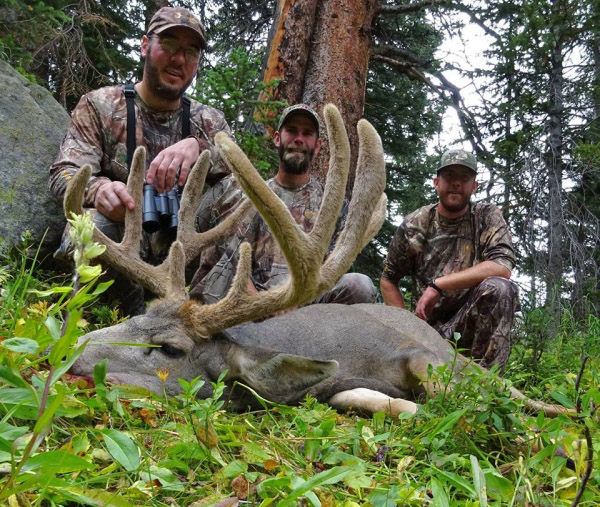 Super Sweet Colorado High Country Muley