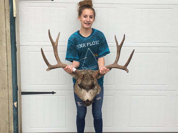 32 inch wide idaho trophy buck monstermuleys com